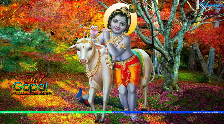Free Download Bal Krishna Wallpaper