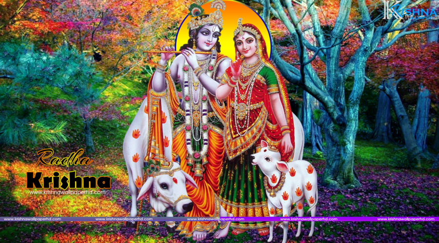 Download Free Radha Krishna Wallpaper