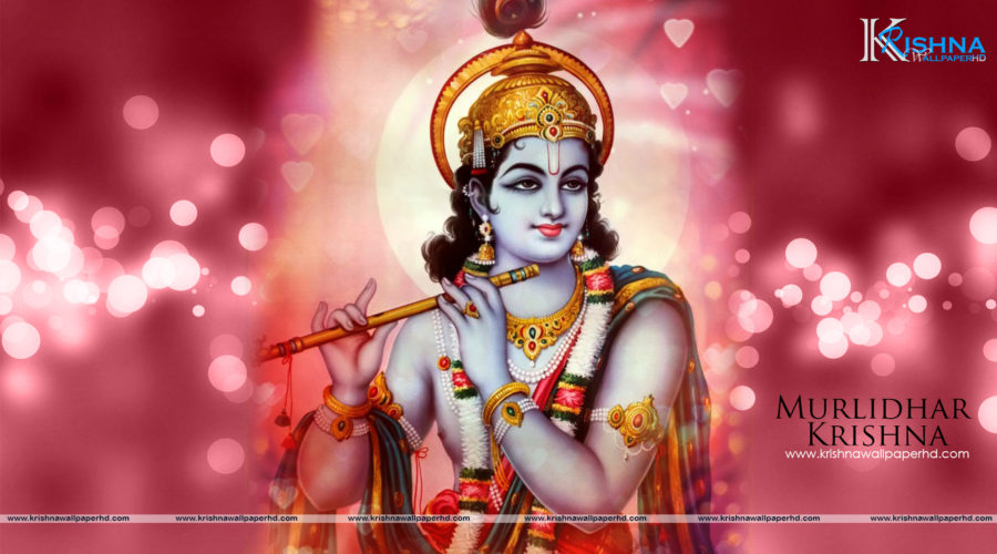 Murlidhar Krishna Full HD Size Wallpaper Free Download